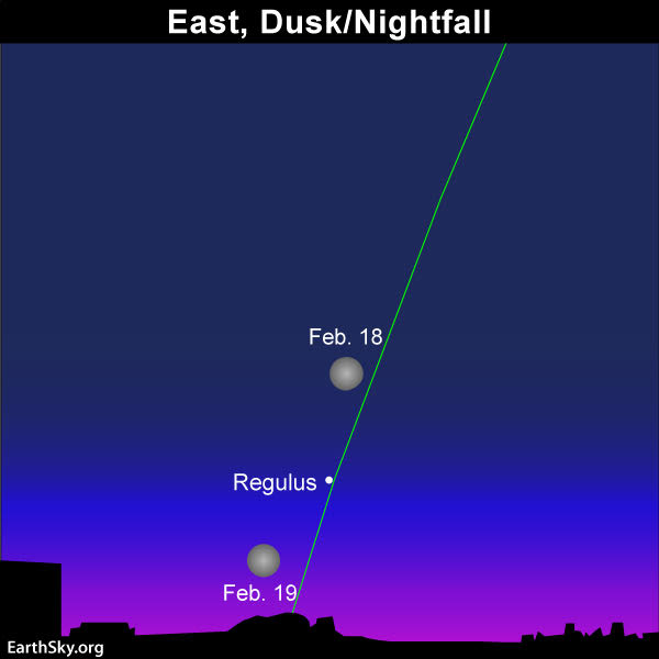 2019-feb-18-19-full-moon-and-regulus